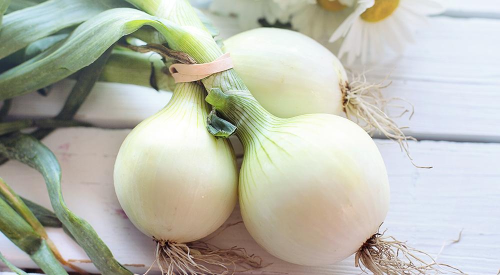 營養師分享 3 種天然抗過敏營養素,「這個」建議天天喝!